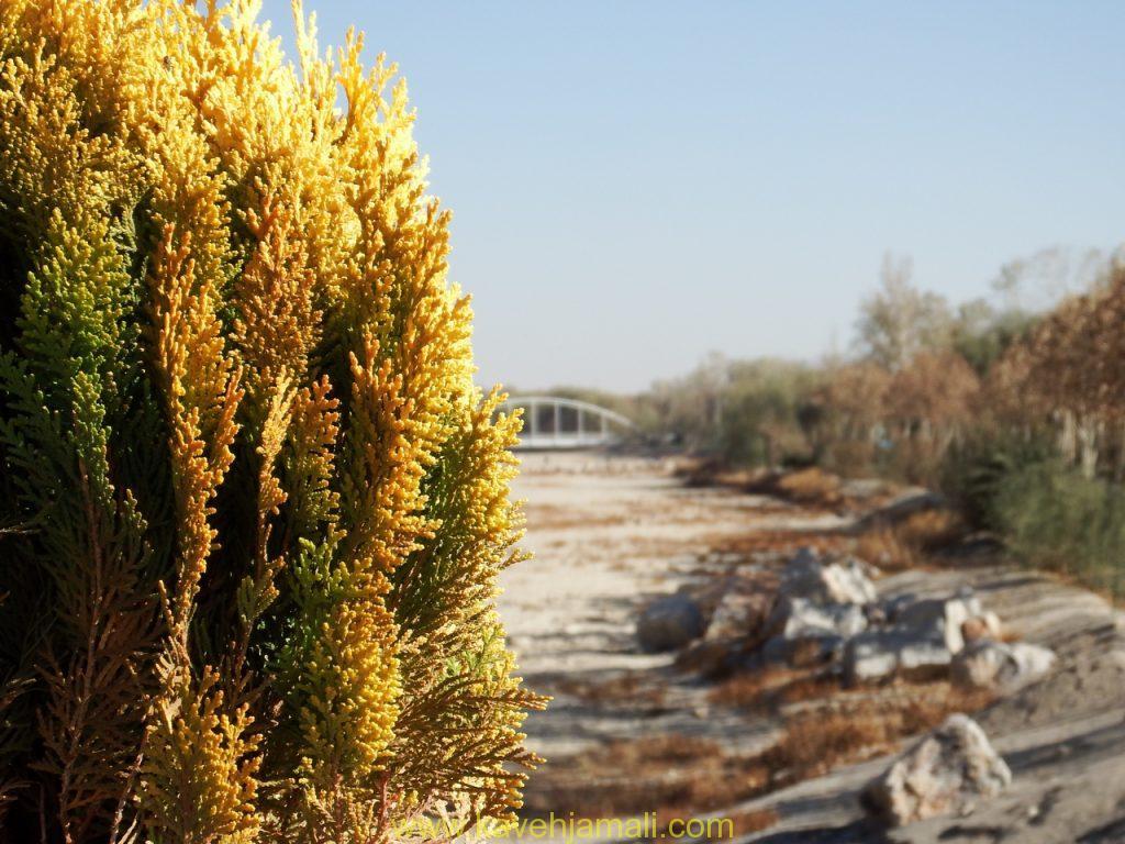 زاینده رود کاملا خشک شده است