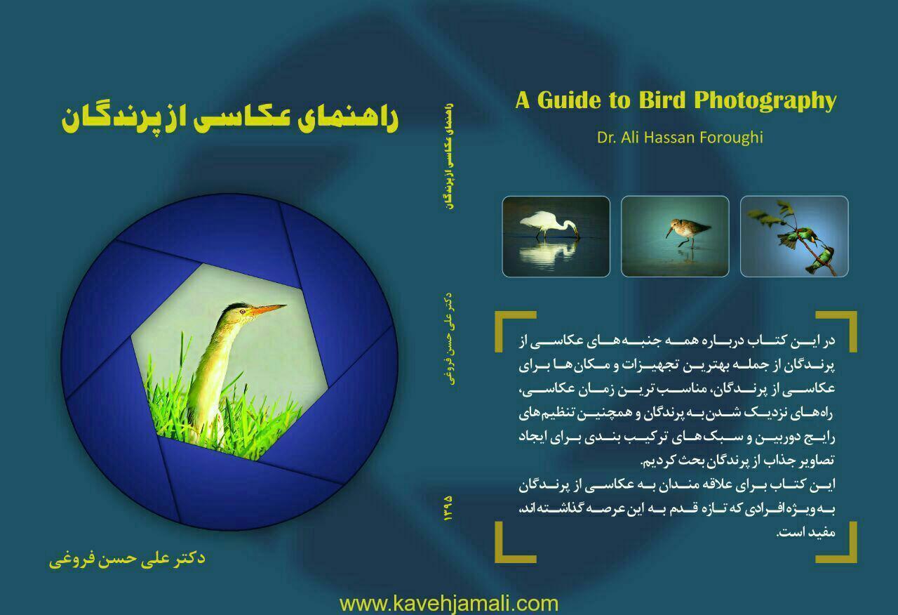 معرفی کتاب راهنمای عکاسی از پرندگان